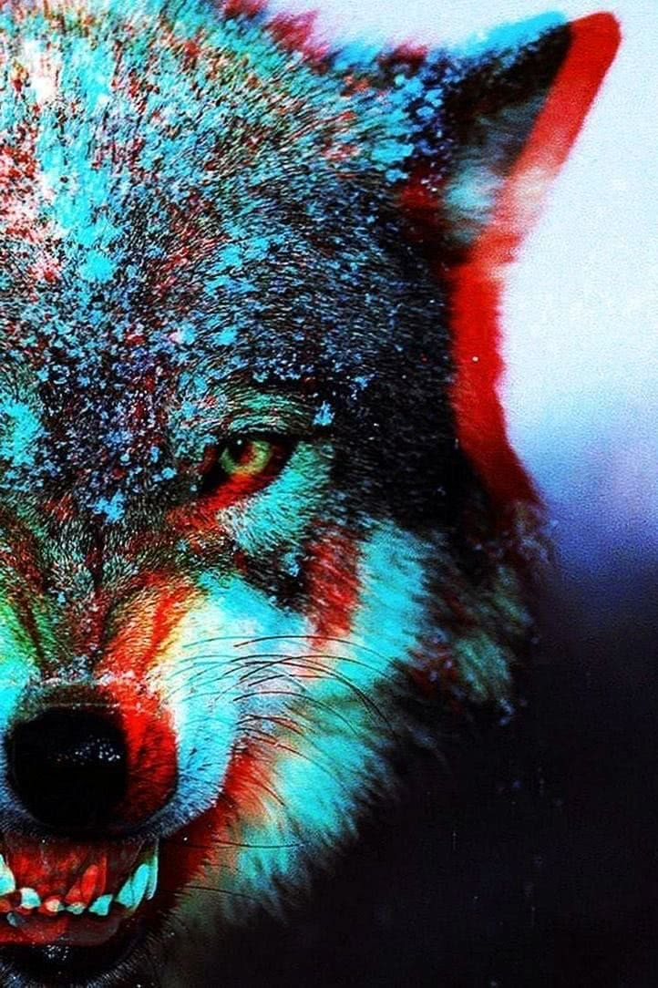 Killer Wolf Wallpaper