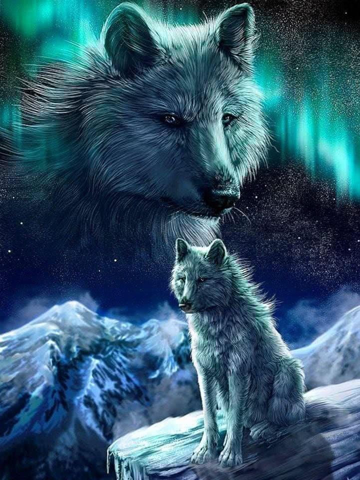 Black Wolf Wallpaper Pinterest