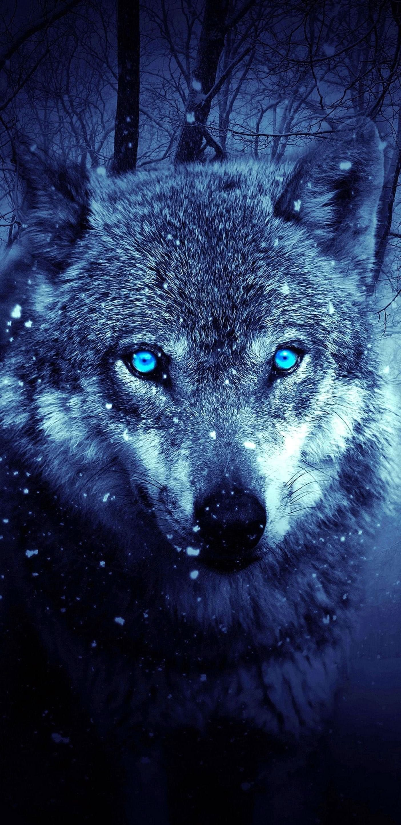 Galaxy S8 Wolf Wallpapers