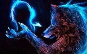 Dark Werewolf Wolf Wallpapers