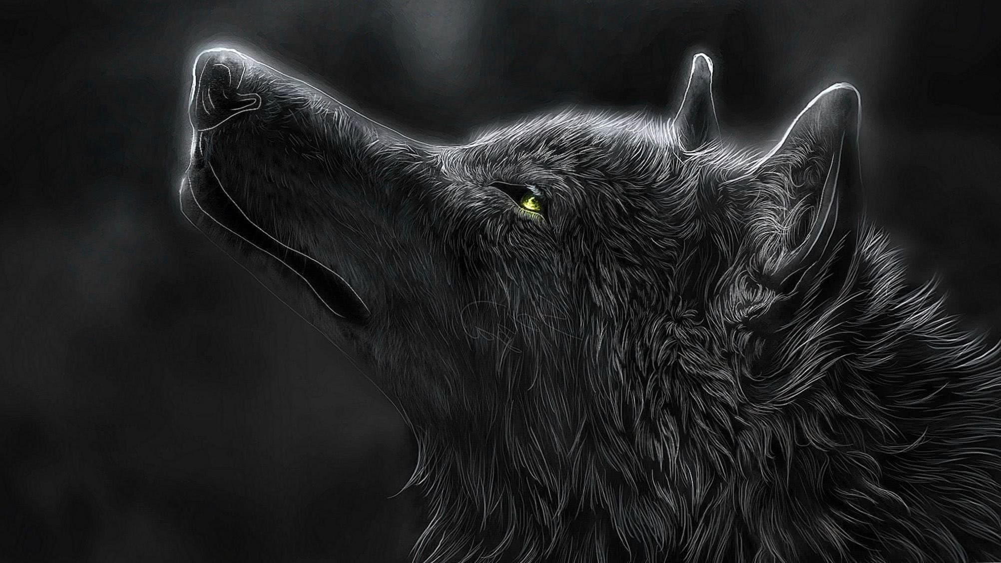 Wolves Wallpaper 2048×1152