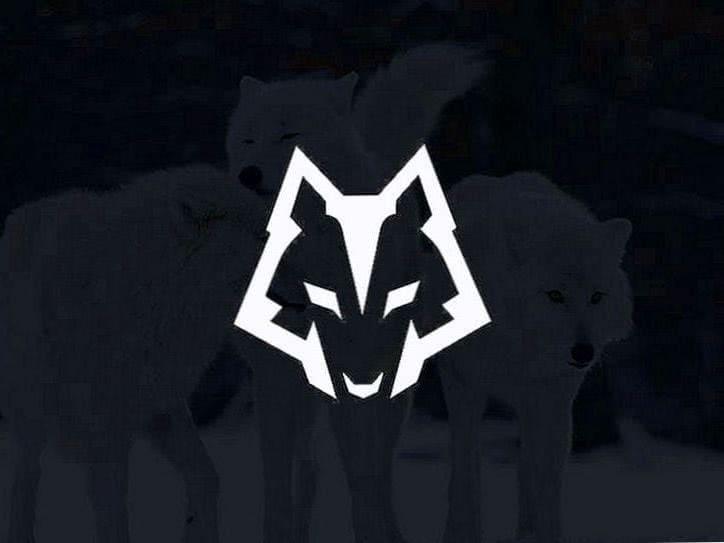 Wolf Head Logo Wallpapers Wolf Wallpaperspro
