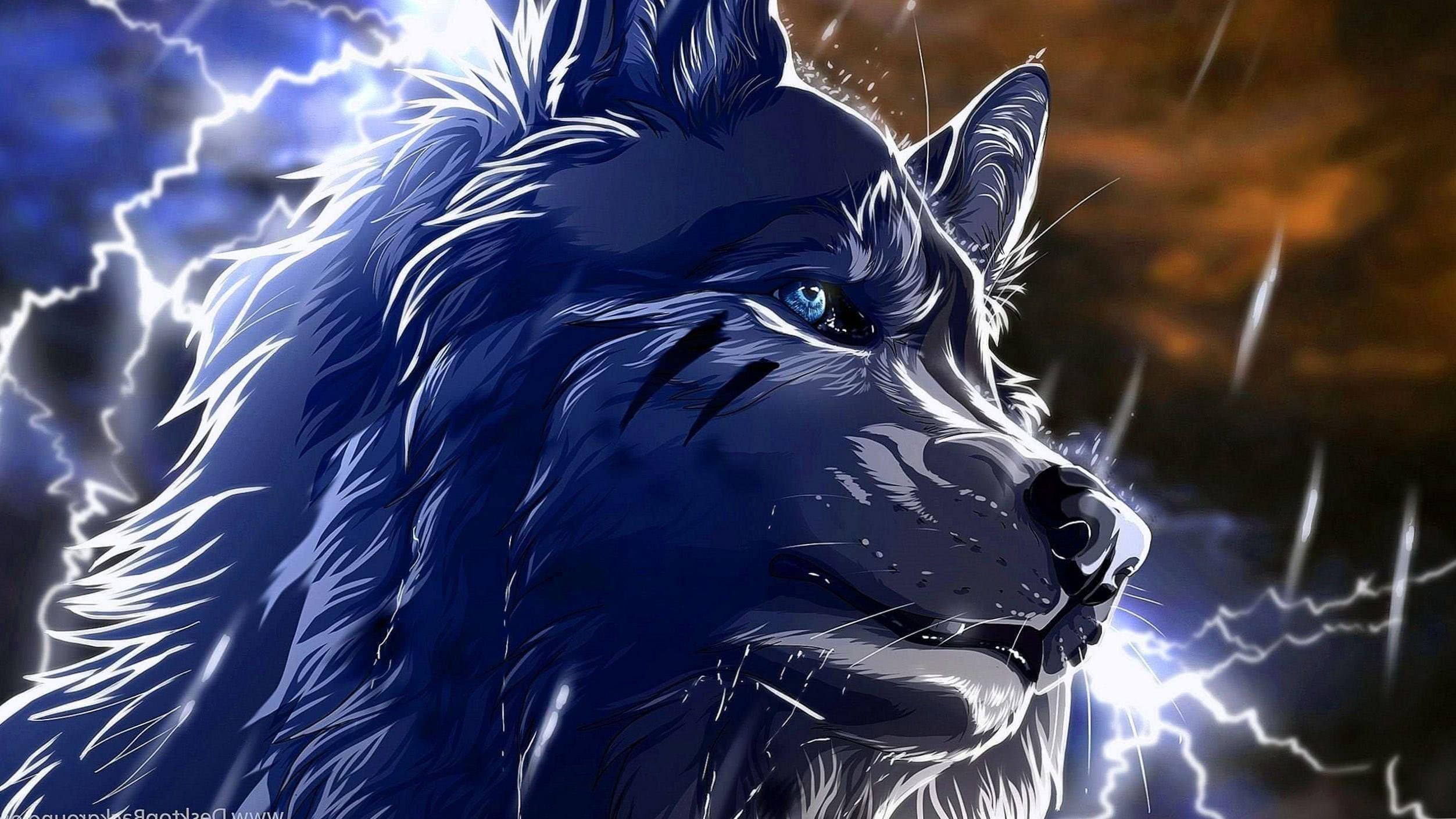 Wolf Wallpaper 2560×1440