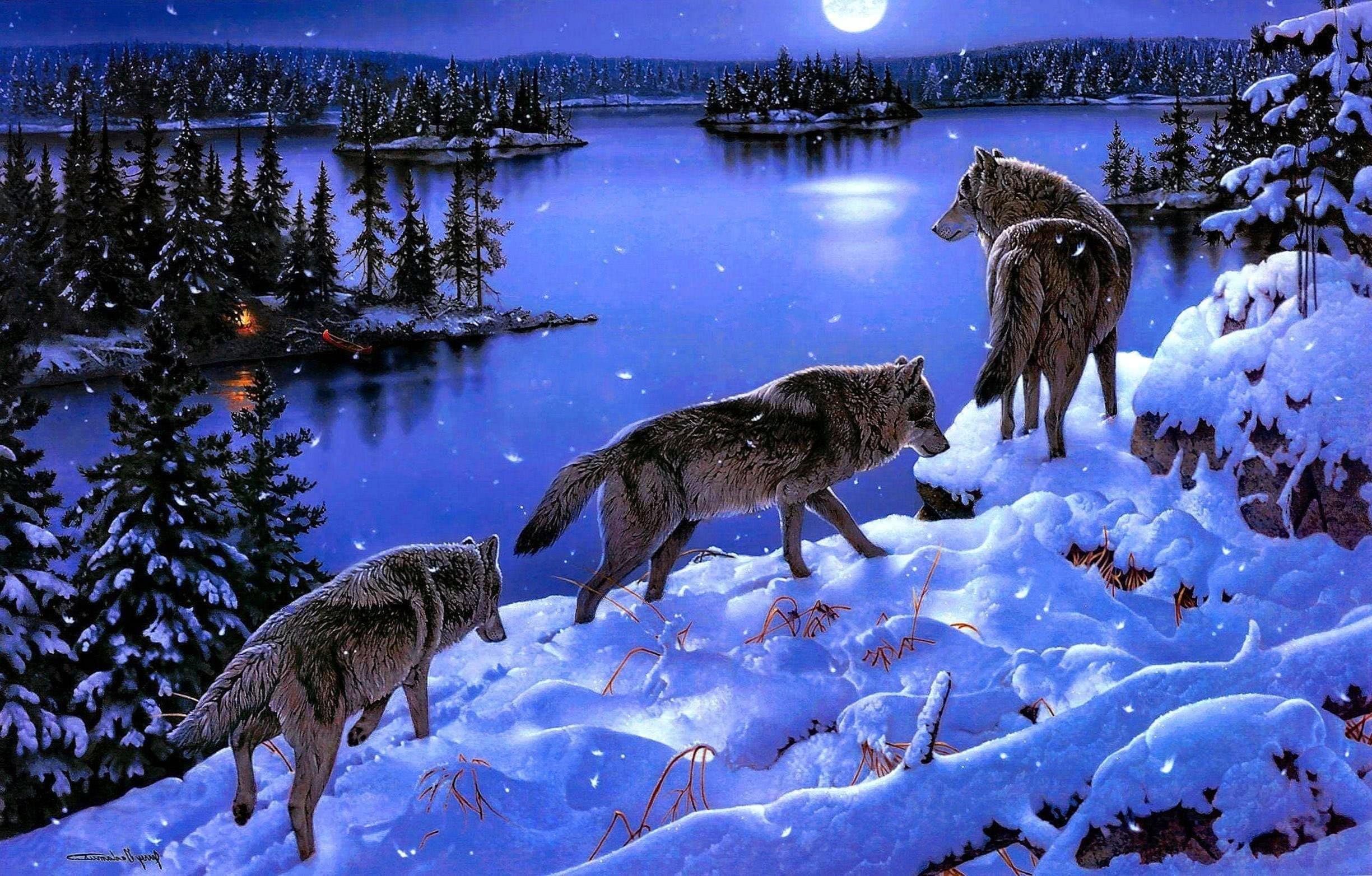 Wallpaper Snow Wolf