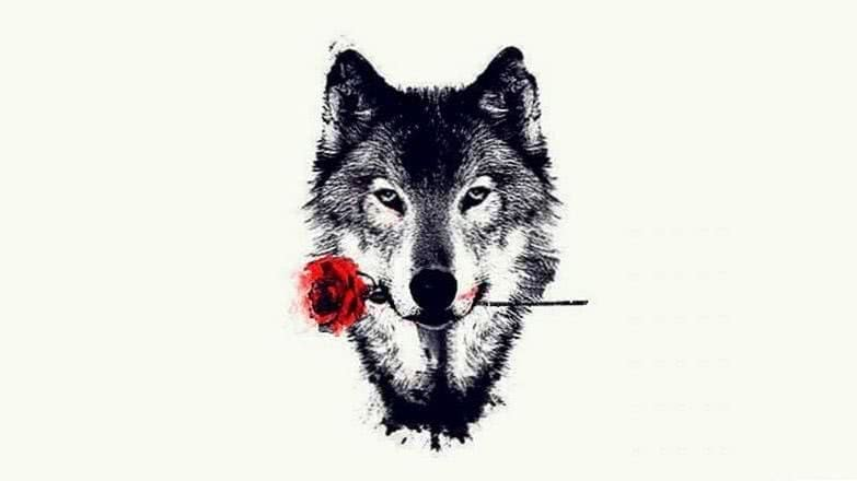 Handy Wallpapers Wolf