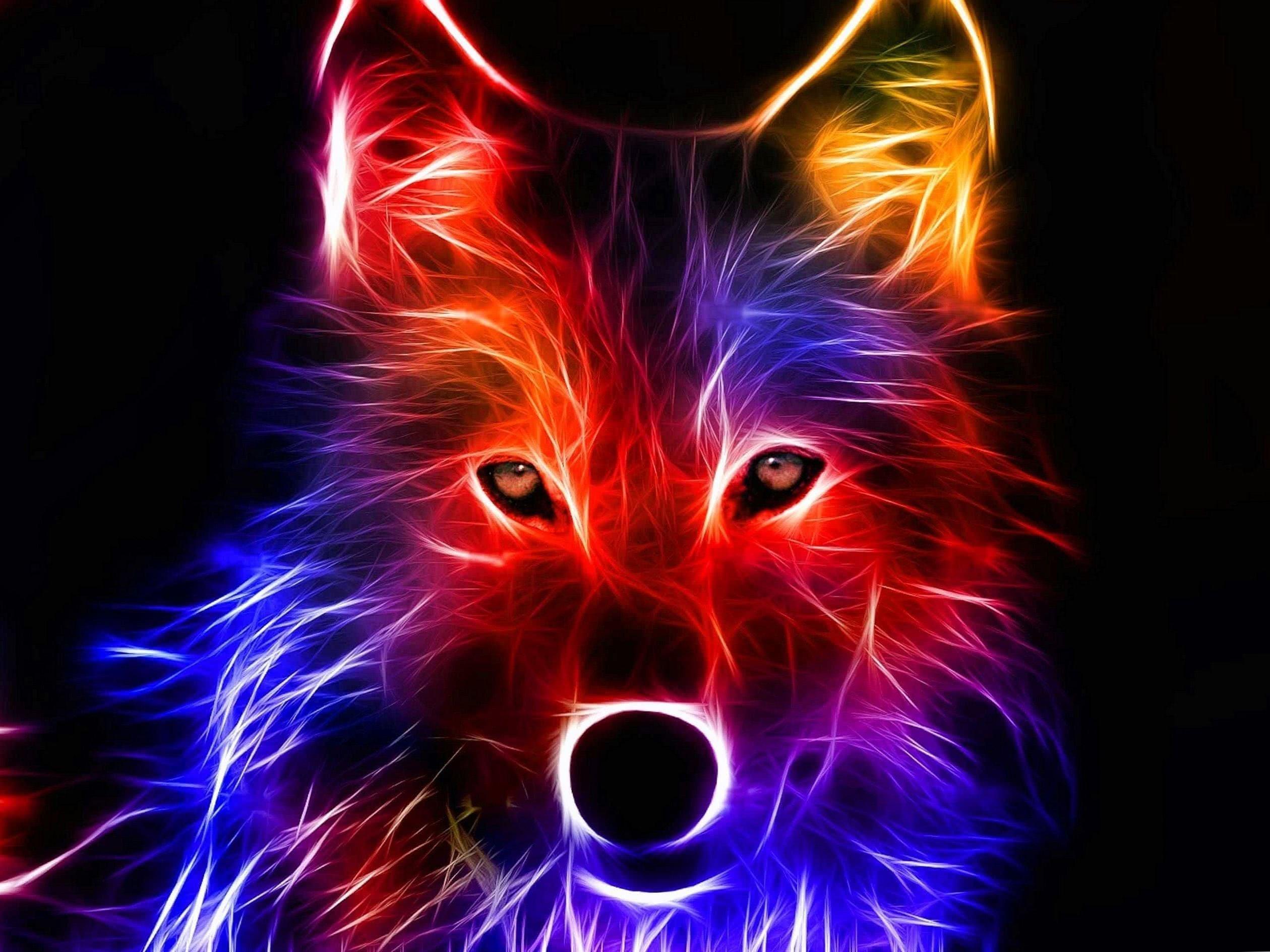 Wolf Bilder Wallpaper