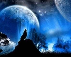 Wolf Wallpapers For Laptop