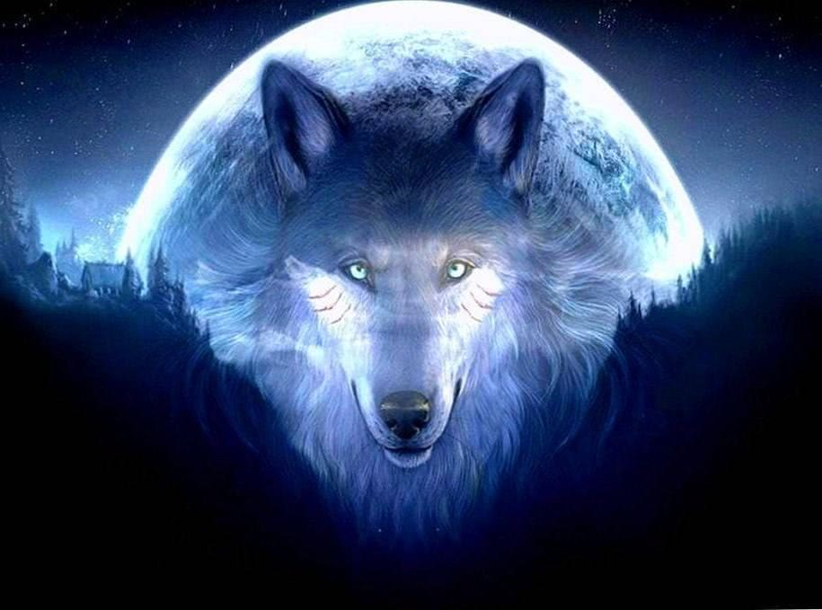3D HD Wallpapers Wolf