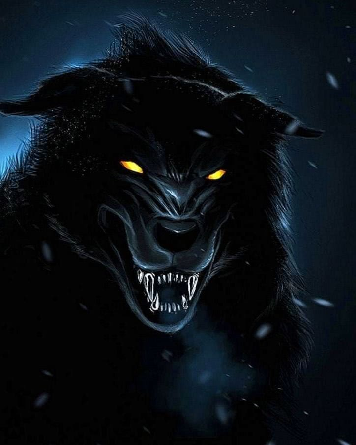 Home Screen Wolf Wallpapers