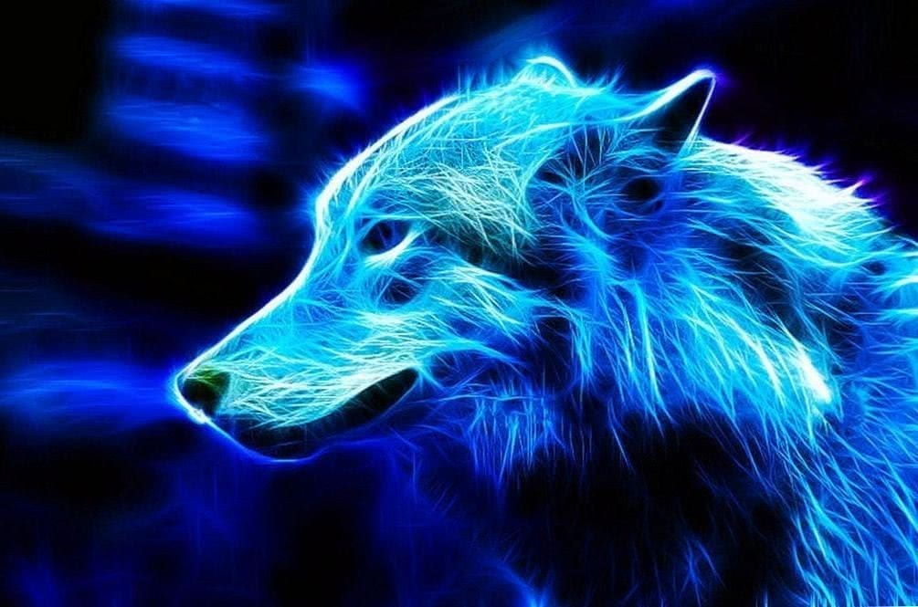 Wallpapers Blue Wolf