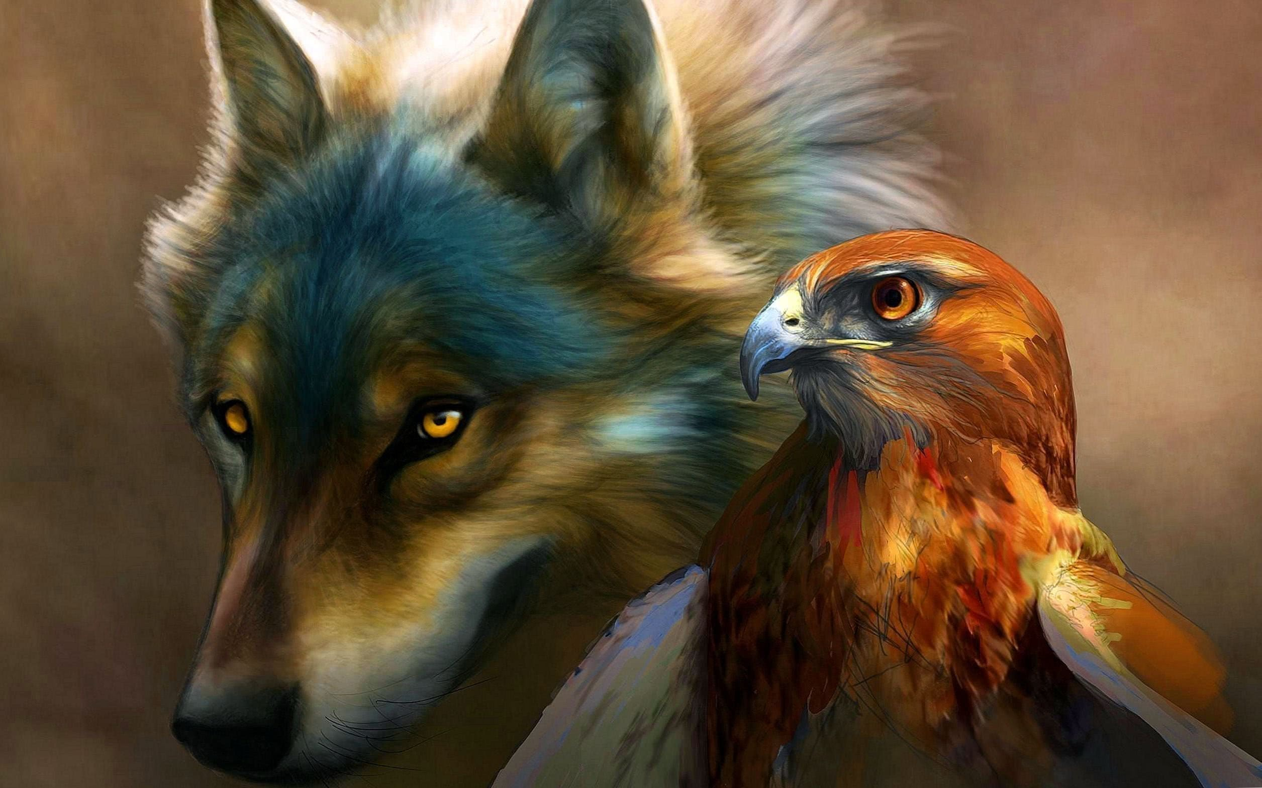 Eagle And Wolf Wallpaper