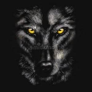 Wolf Agressive Wallpapers