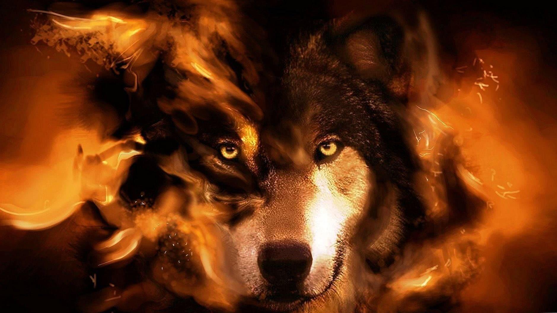 Alpha Wolf Wallpapers HD