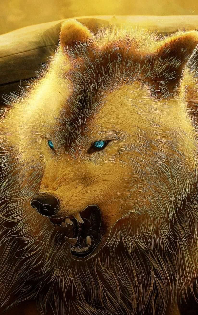 Angry Wolf Wallpaper iPhone
