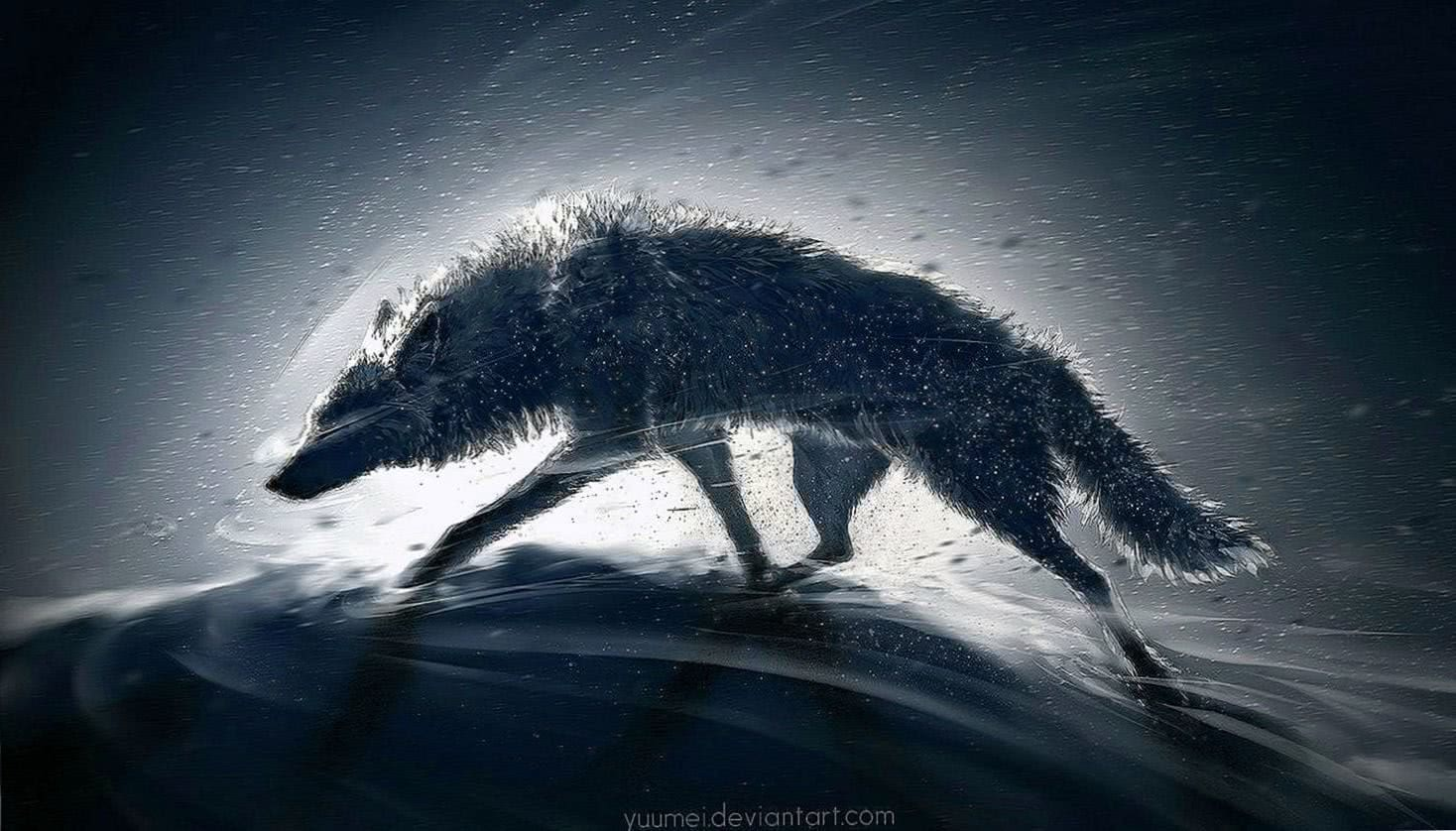 Wolf Wallpaper HD PC