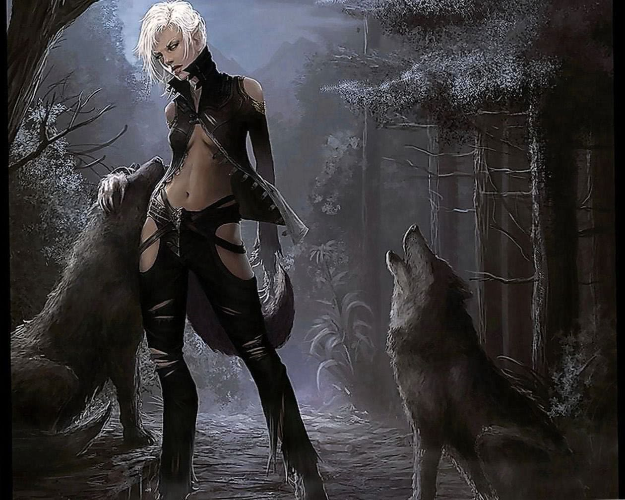 Wallpapers Fantasy Girl And Wolf Wolf Wallpapers Pro