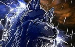 Animated Wolf Wallpapers