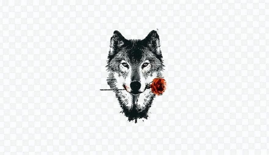 Wolf Wallpapers For HTC