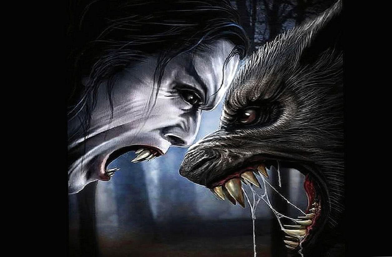 Werewolf And Vampire Wallpaper