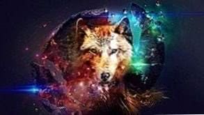 Wallpapers Wolf Planet