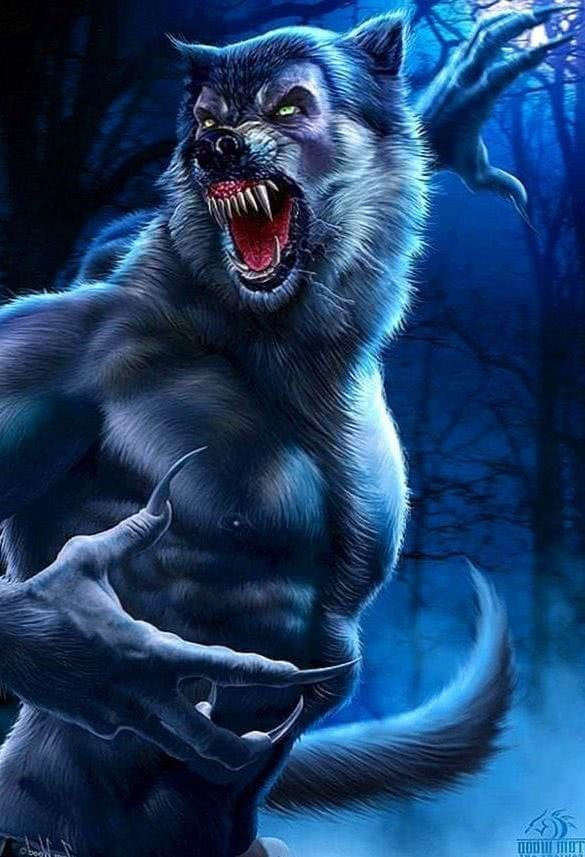 Wallpaper Of Werewolf