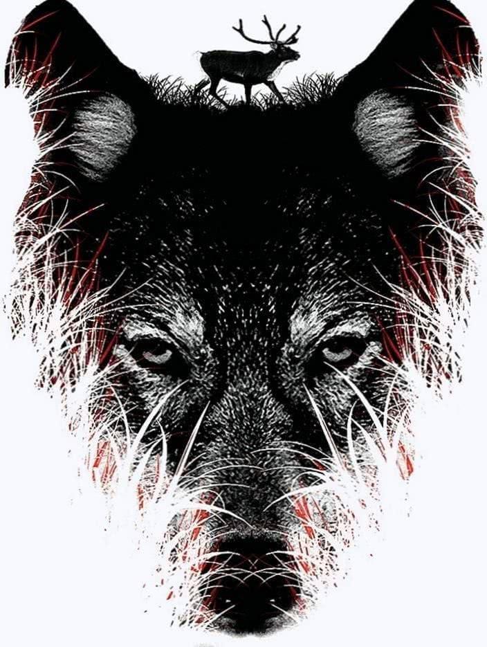 Wolf Wallpaper HD Tumblr