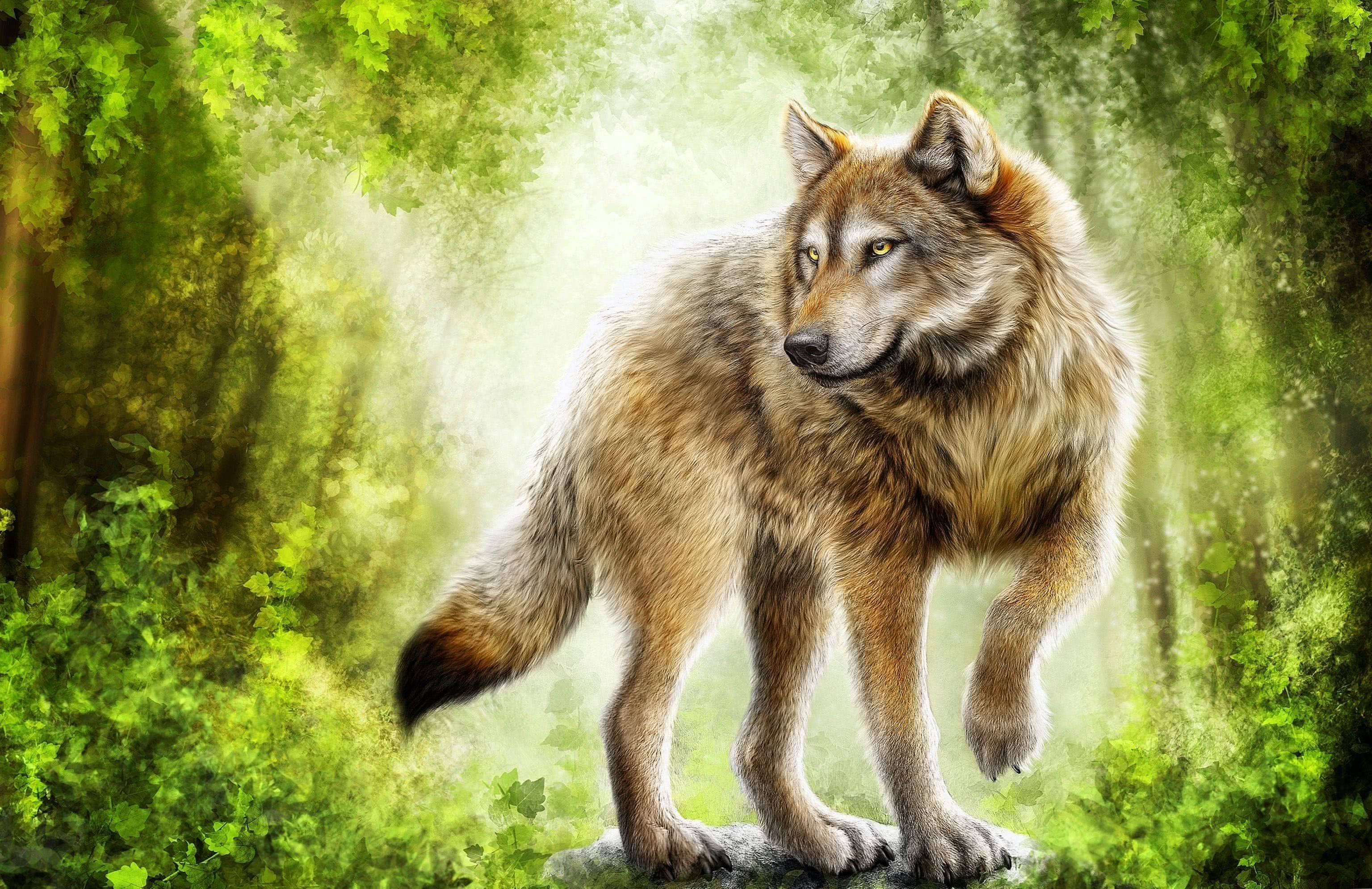 Wolf Painting HD Wallpaper