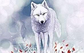 Wallpapers Flower Wolf