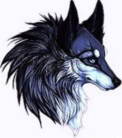 Wolf Name Wallpapers
