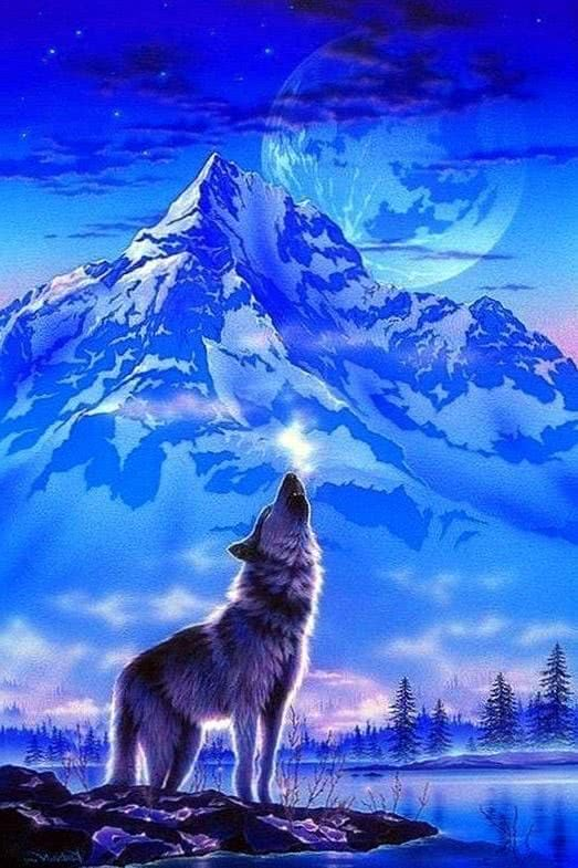 Beautiful Wolf Mobile Wallpaper