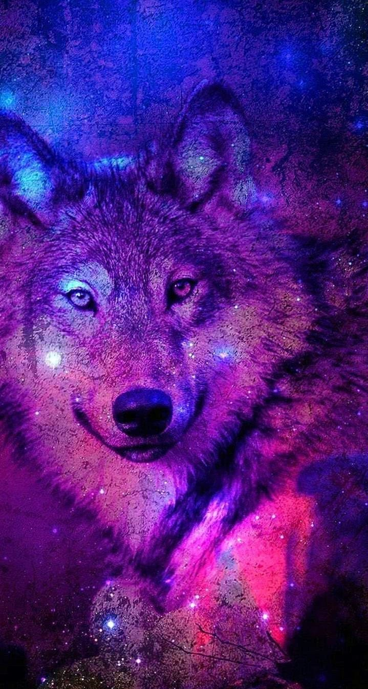 Galaxy Wolf Wallpapers Iphone Wolf Wallpaperspro - pictures of wolves with a galaxy background