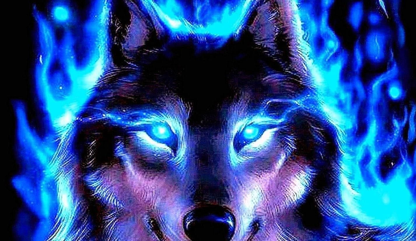 Blue Wolf HD Wallpaper
