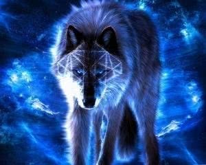 Dark Blue Wolf Wallpapers