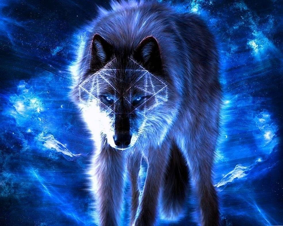 Free Dark Blue Wolf Wallpapers Wolf Wallpapers Pro
