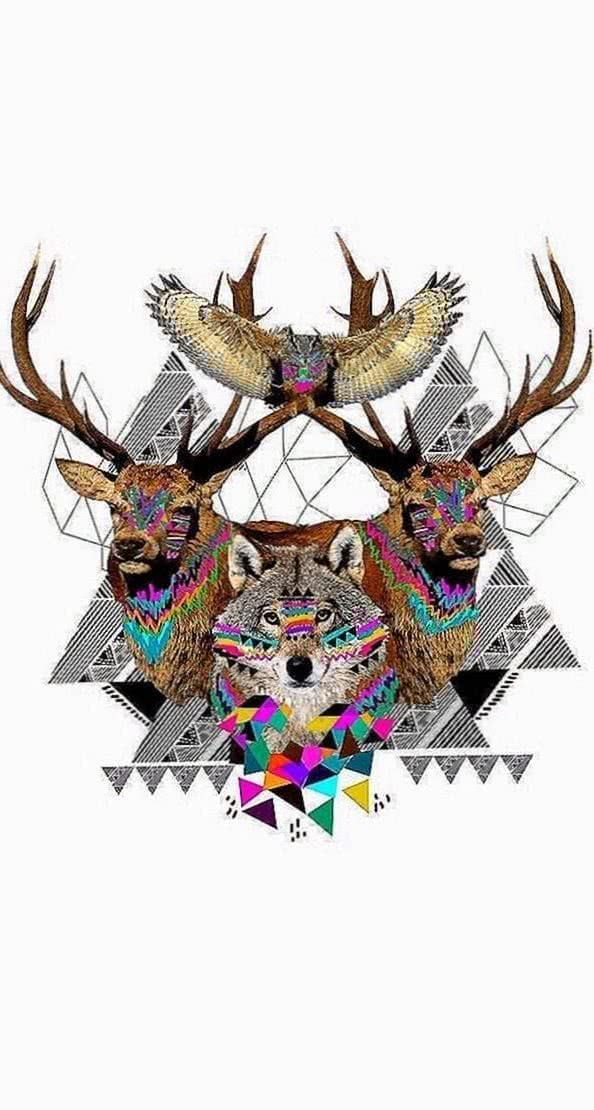 Geometric Wolf Wallpapers HD