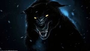 HD Wallpapers Black Wolf