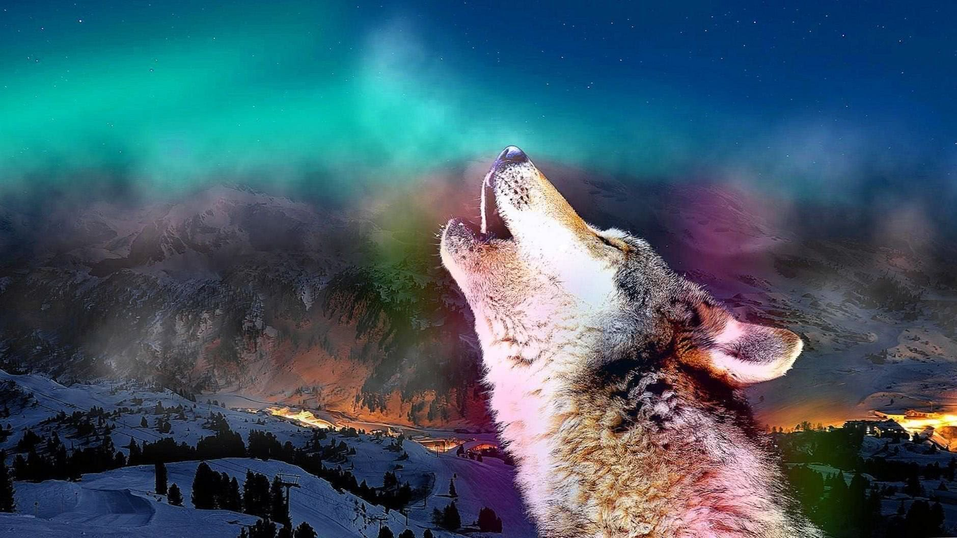Wolves Howling Wallpapers HD