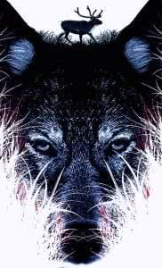 Black Wolf Wallpapers For iPhone