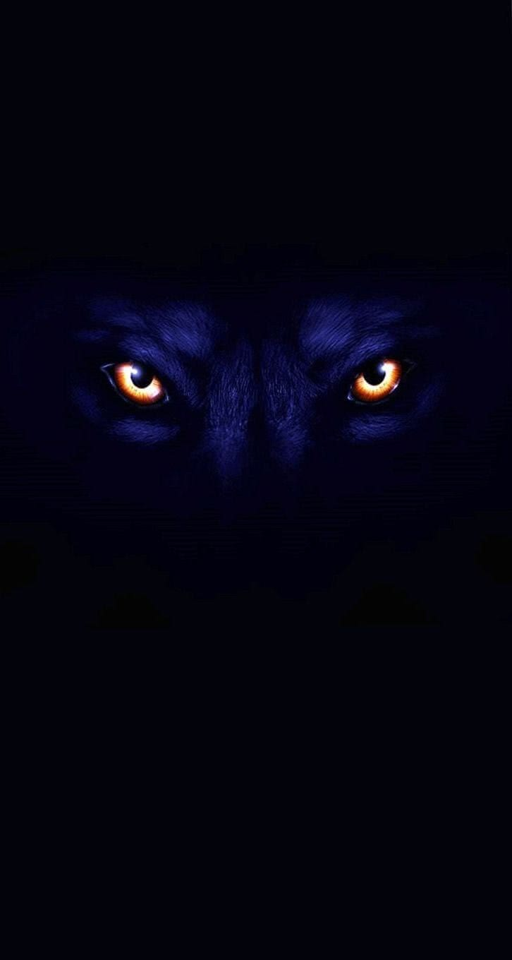 Black Wolf Wallpaper For iPhone