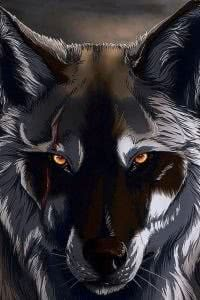 Black Wolf 3D Wallpapers