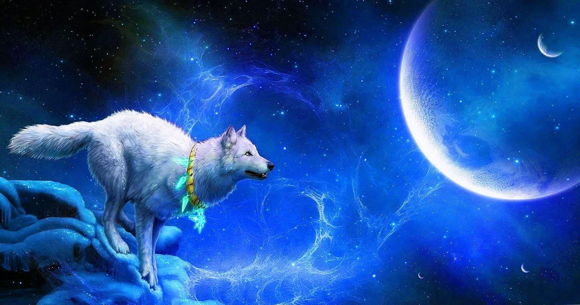 Wallpaper Blue Wolf