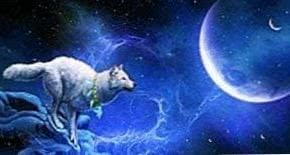 Blue Moon Wolf Wallpapers