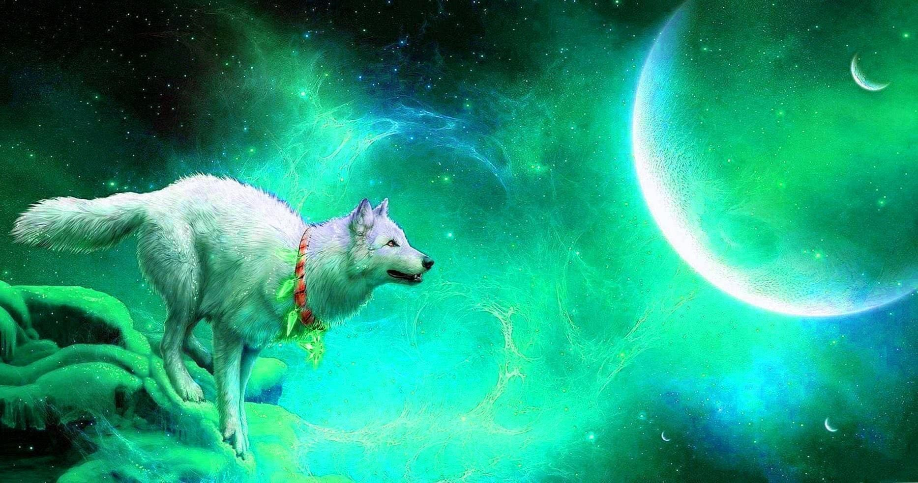 Blue Wolf Wallpapers HD
