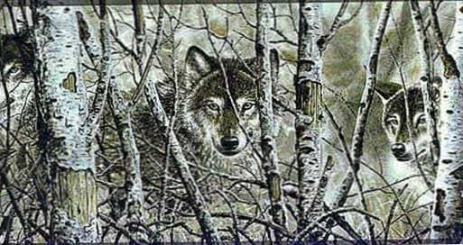 Wolf Wallpapers Borders