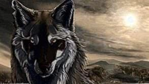 Wallpapers PS3 Wolf