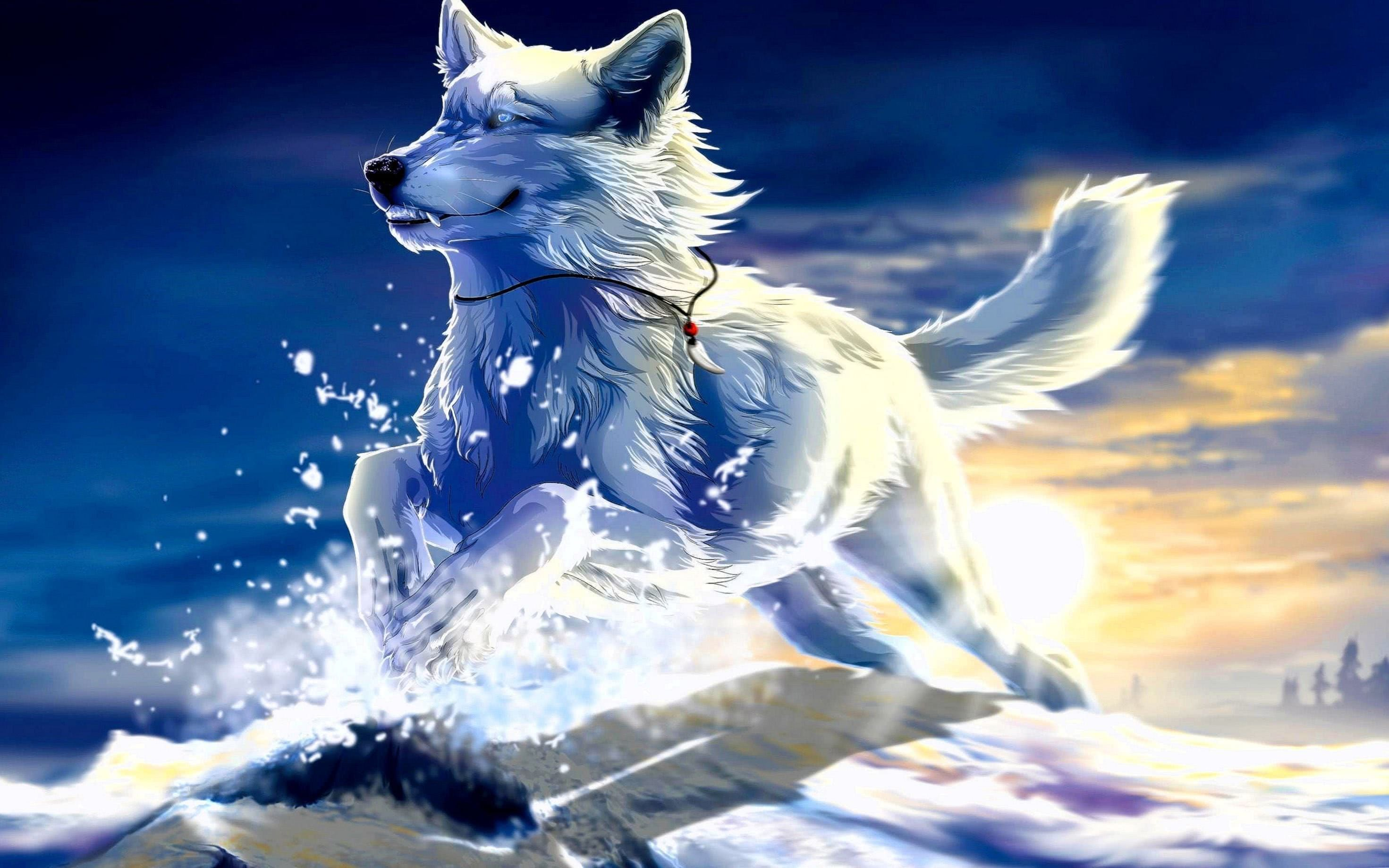 Cool Wolf Pictures Wallpaper
