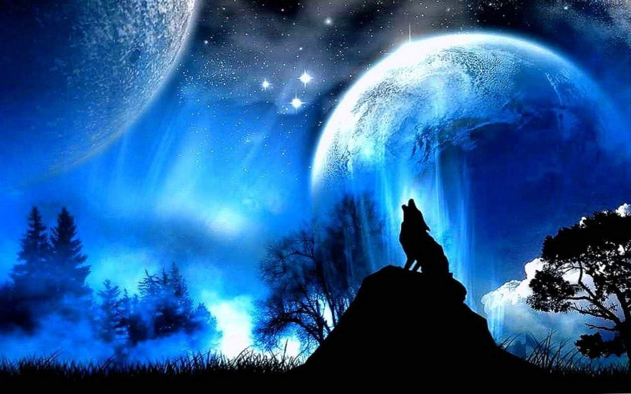 Wallpaper HD Fantasy Wolf