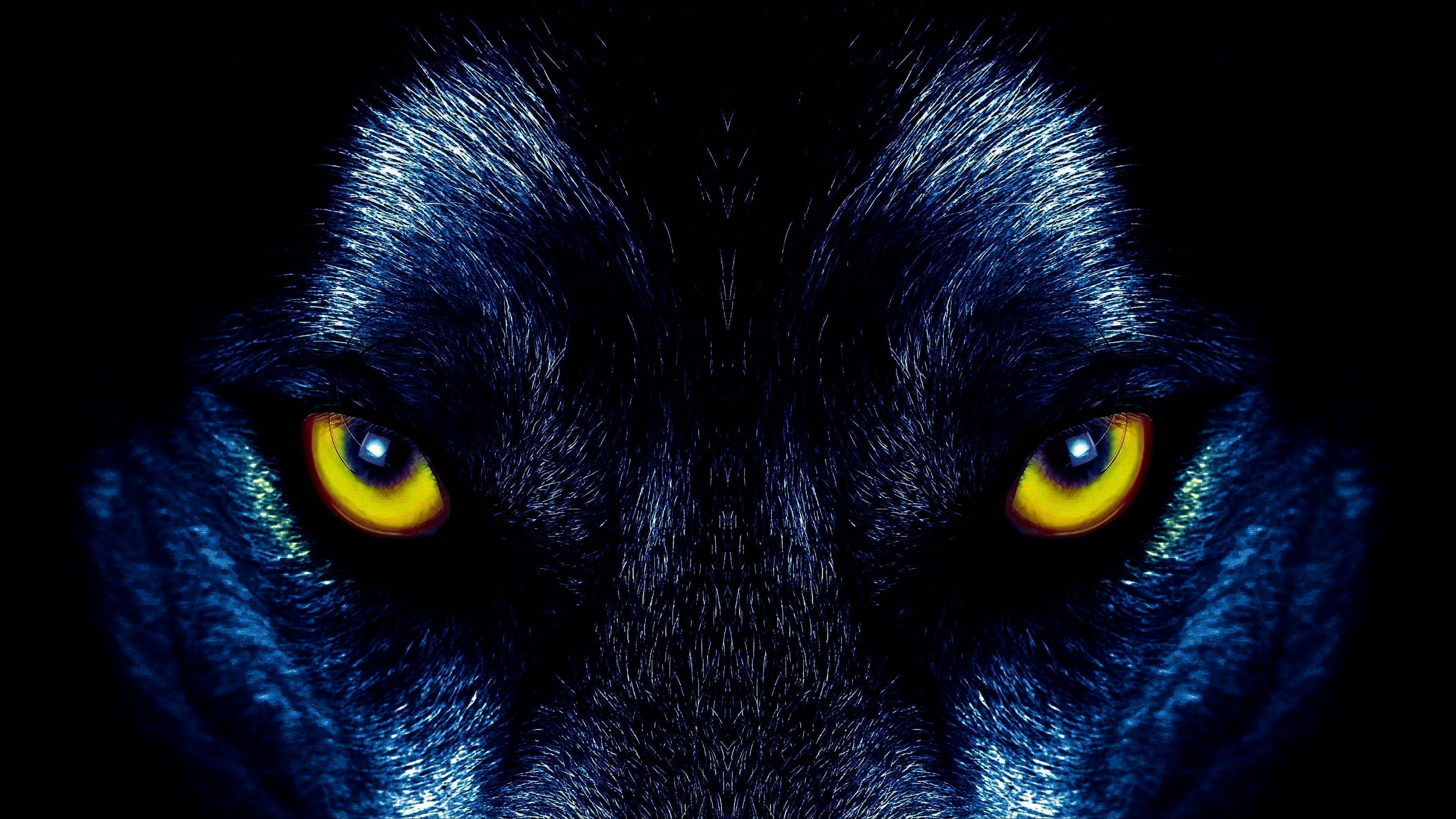 Cool Black Wolf Wallpapers 4K