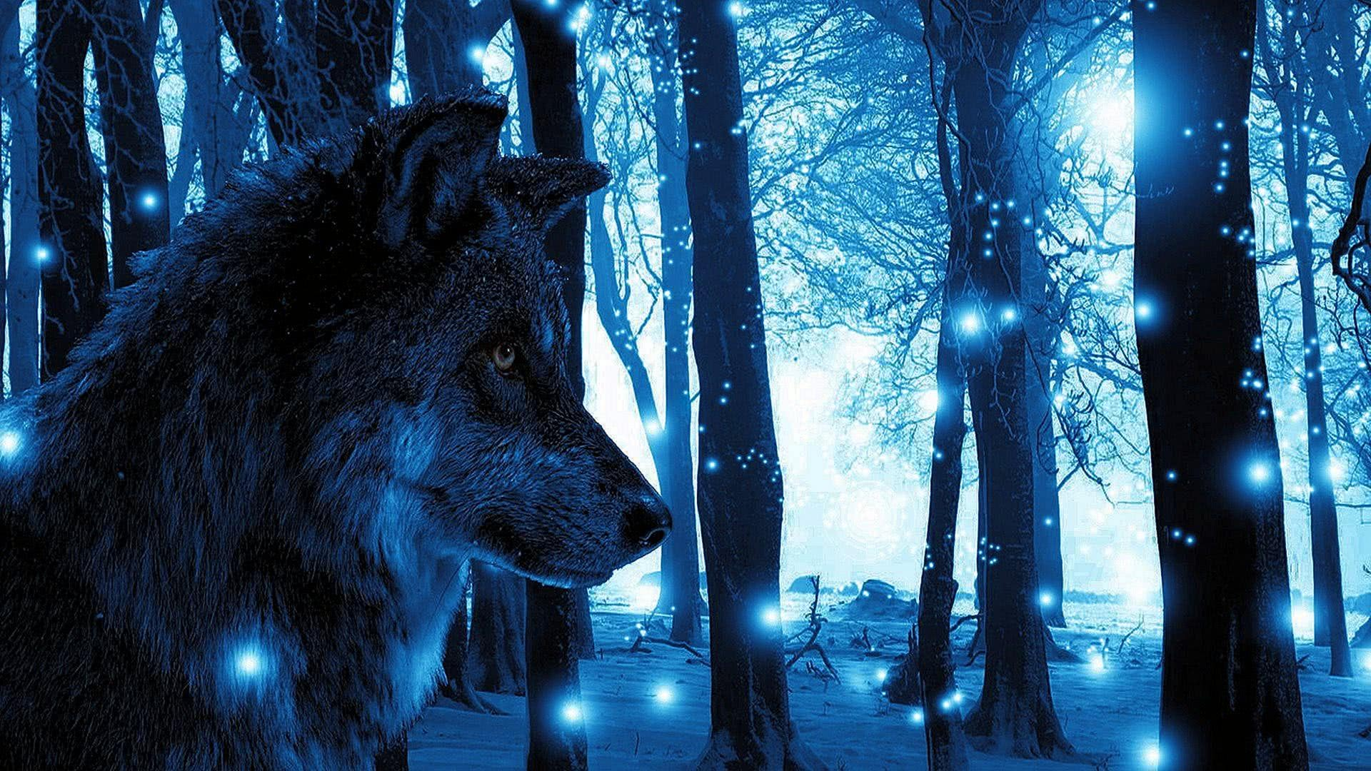 Cool Blue Wolf Wallpapers