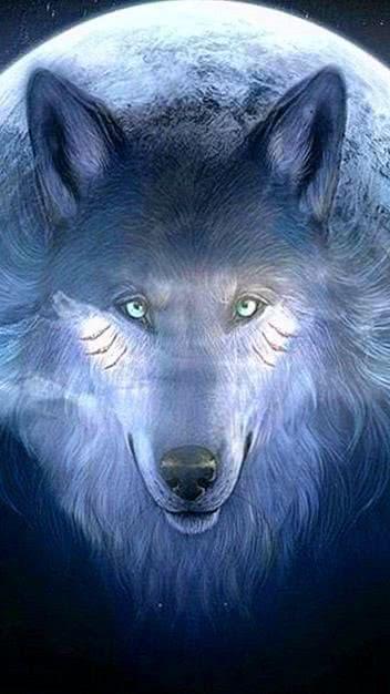Wallpaper PS3 Wolf